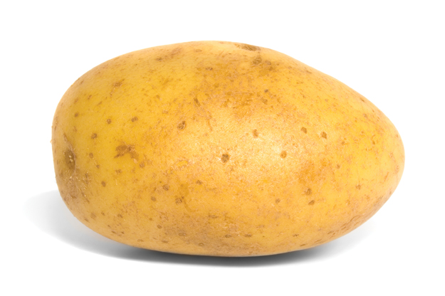 Here is a potato